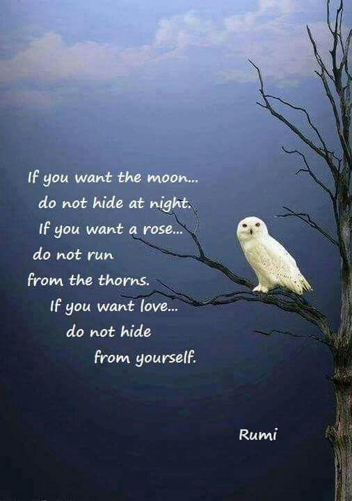 Spiritual Materialism Revisited Ram Dass On Trungpa